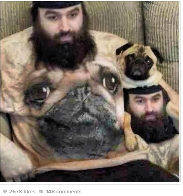 Shirts For Pugs photo - 2