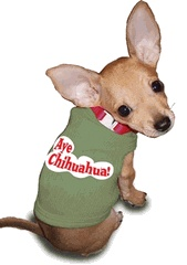 Small Chihuahua Clothes photo - 1
