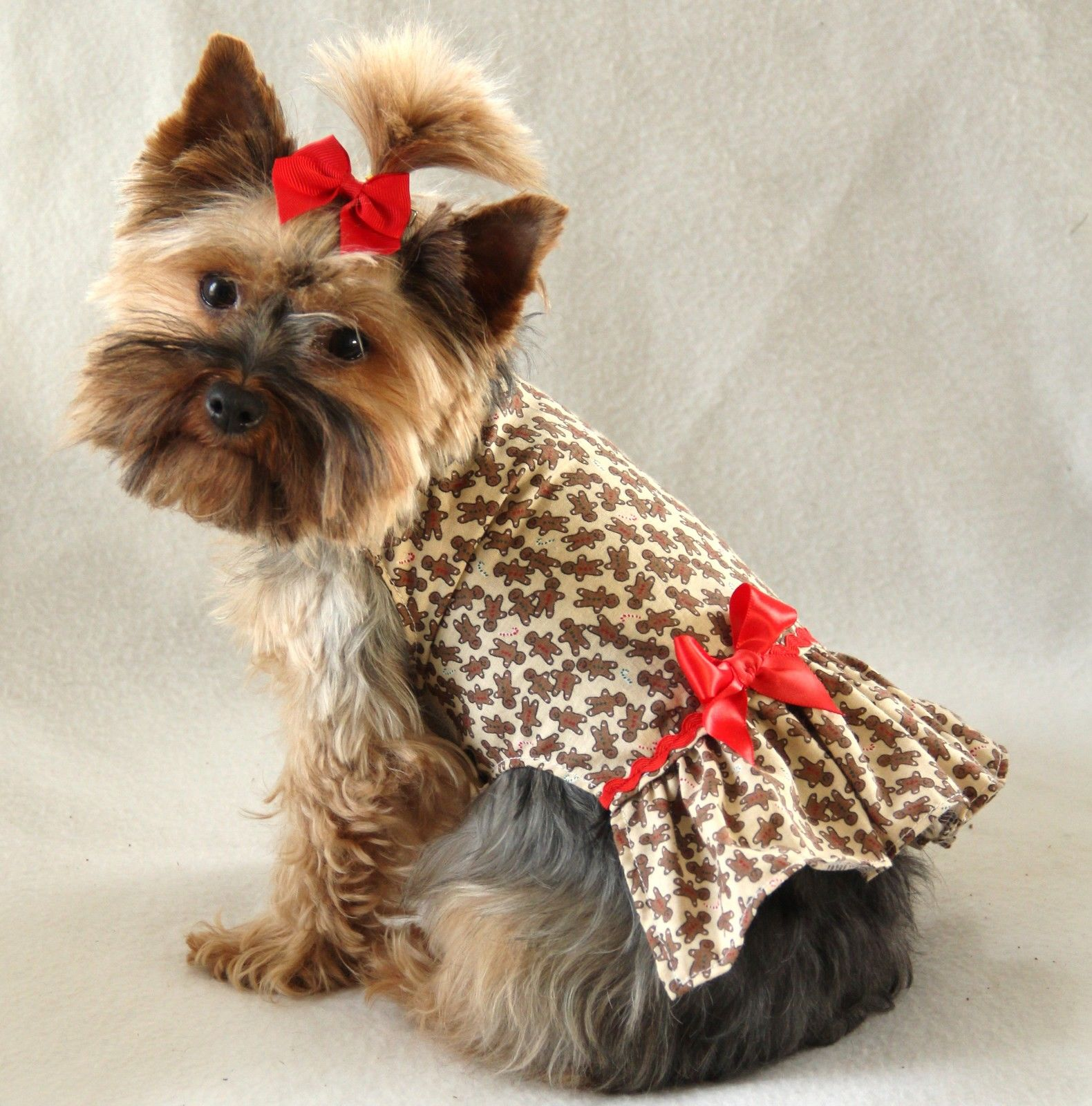 Small Dog Christmas Clothes photo - 3