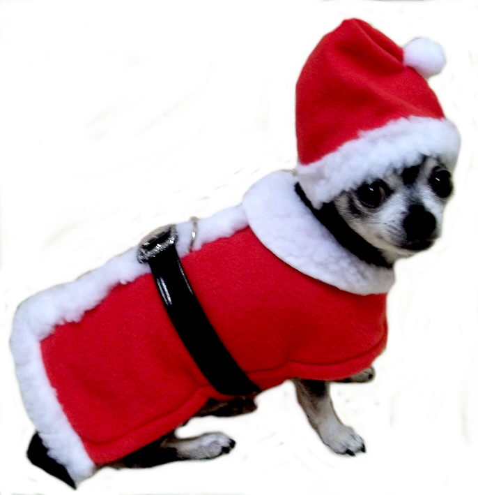 d43afc75d9c Small Dog Christmas Outfits ▻ Dress The Dog - clothes for your pets!