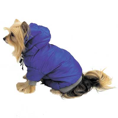 Small Dog Coat photo - 1