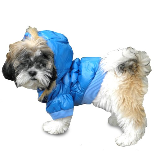 Small Dog Coats For Winter photo - 1