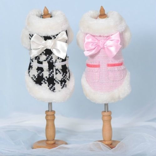 Small Dog Coats For Winter photo - 3