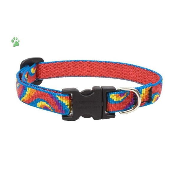Small Dog Collars photo - 1