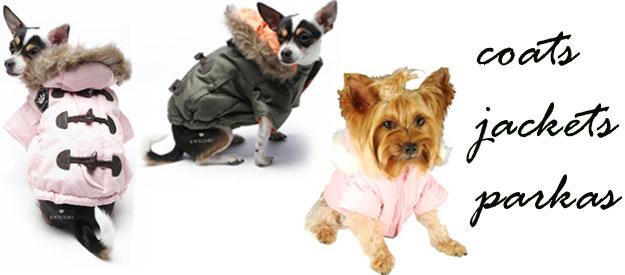 Small Dog Jackets Winter photo - 2