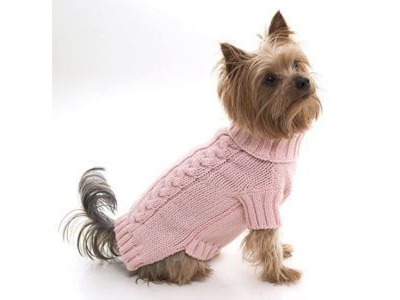 Small Dog Jumper photo - 3