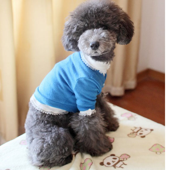 Small Dog Outfits Cheap photo - 3