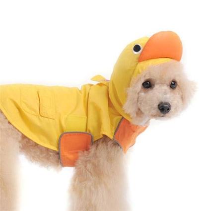Small Dog Raincoat photo - 2
