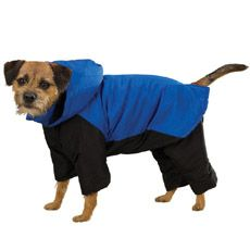 Small Dog Snowsuits photo - 2