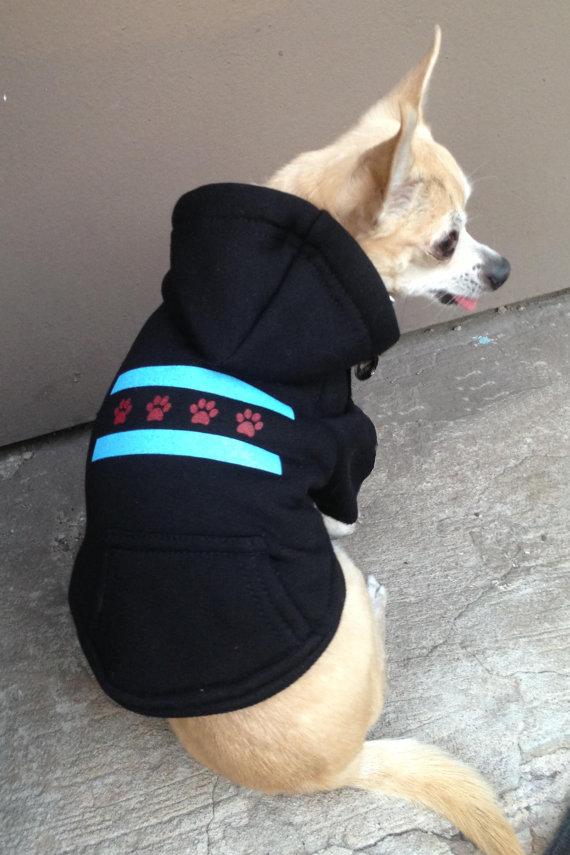 Small Dog Sweatshirts photo - 1
