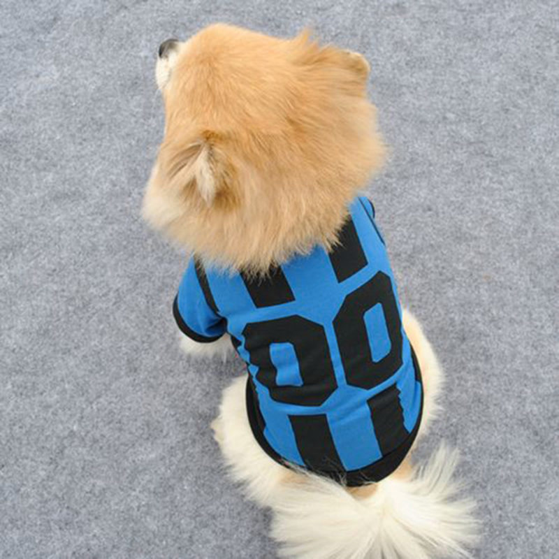 Small Dog T Shirts photo - 3
