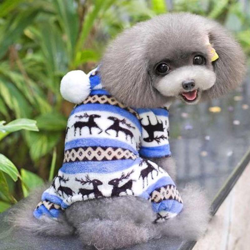 Small Puppy Coats photo - 1