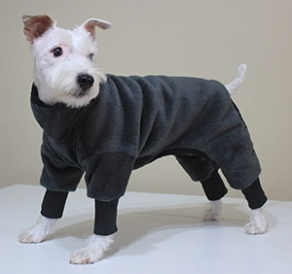Snow Suits For Dogs photo - 2