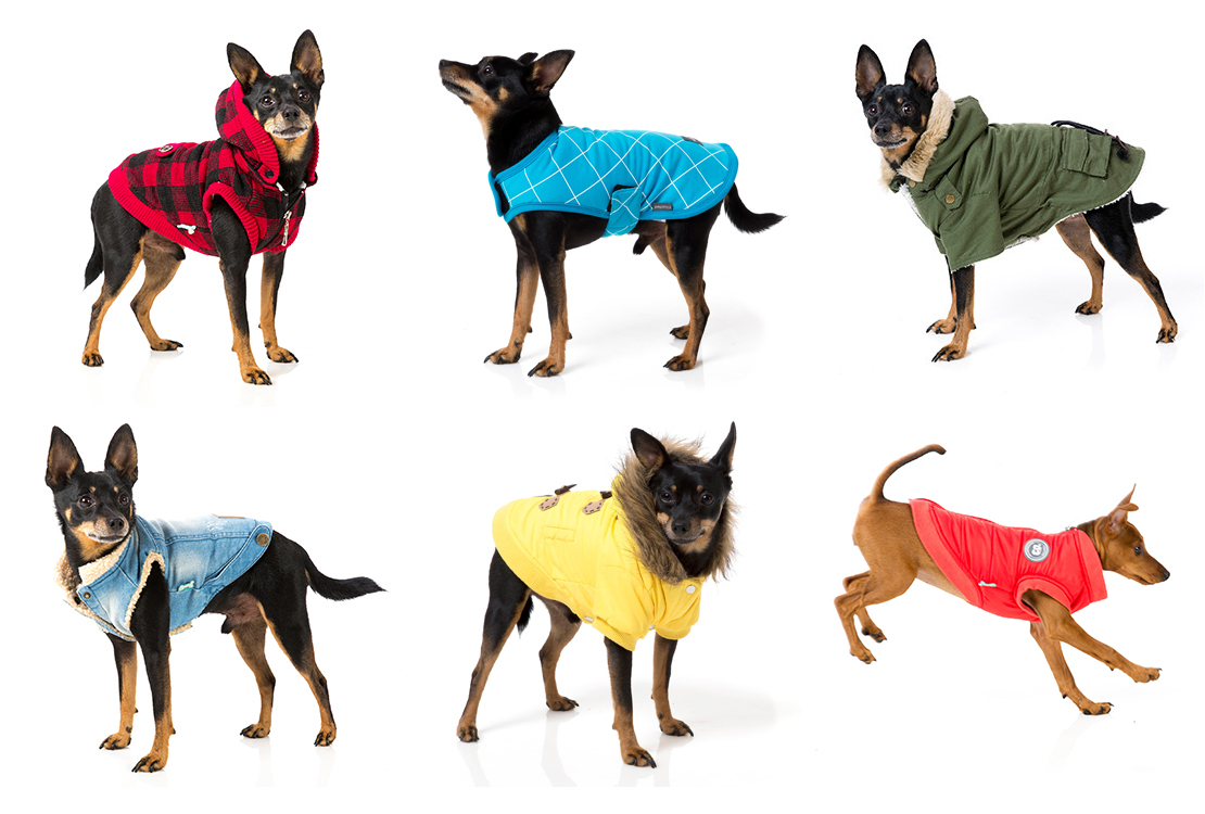 Stylish Dog Coats photo - 1