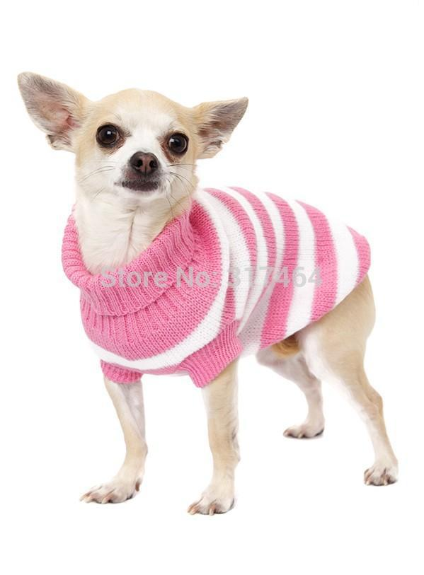 Sweaters For Small Dogs photo - 3