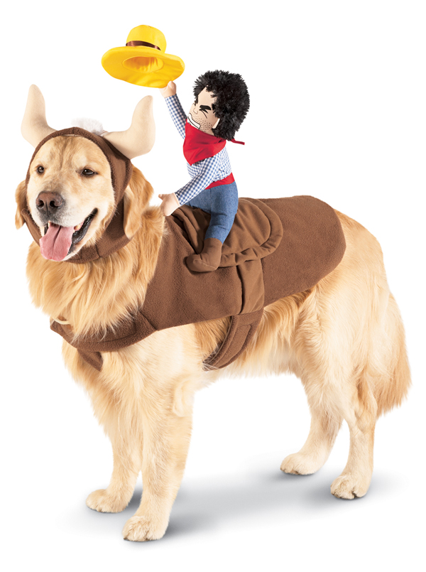 Target Dog Halloween Costumes photo - 1
