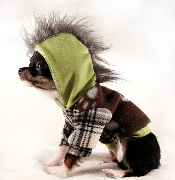 Teacup Clothing For Dogs photo - 2