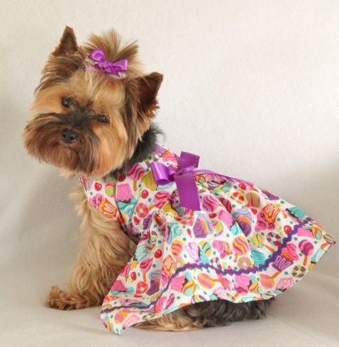 Teacup Puppies Clothes photo - 2