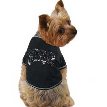 Tee Shirts For Dogs photo - 1