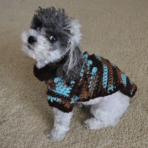 Tiny Dog Sweater photo - 2