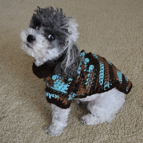 Tiny Dog Sweaters photo - 2