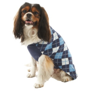 Top Paw Dog Sweater photo - 1