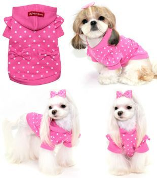 Toy Dog Clothing photo - 2
