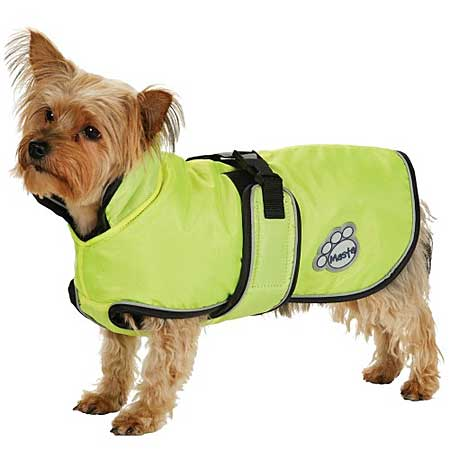 Toy Dog Coats photo - 1
