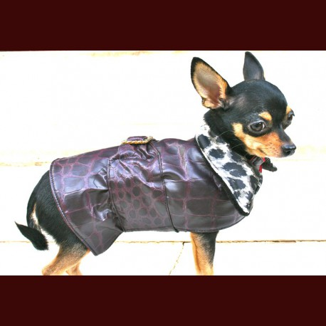 Toy Dog Coats photo - 3