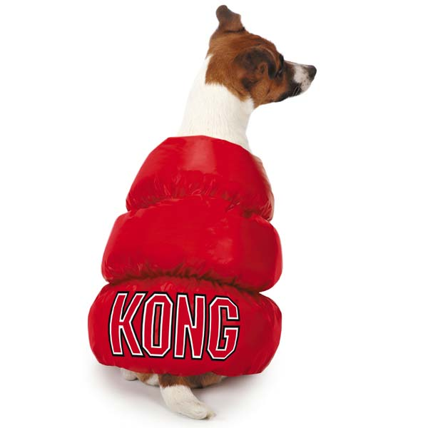 Toy Dog Costumes photo - 1