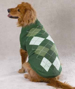 Unique Dog Sweaters photo - 3
