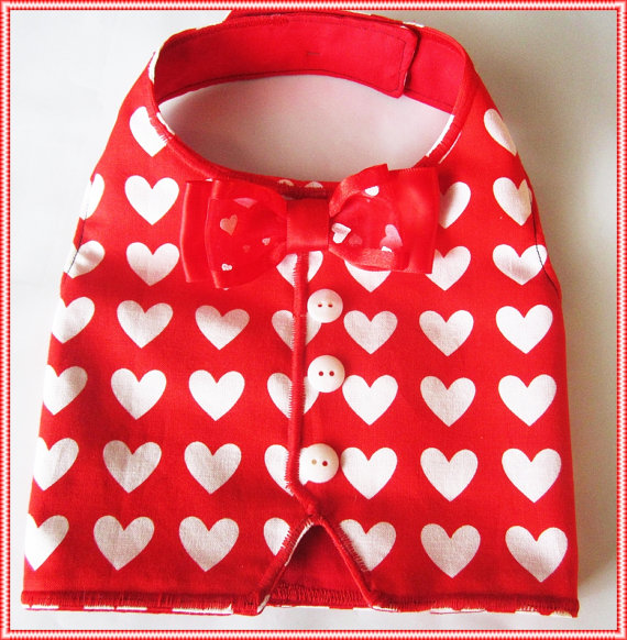 Valentine Dog Clothes photo - 1
