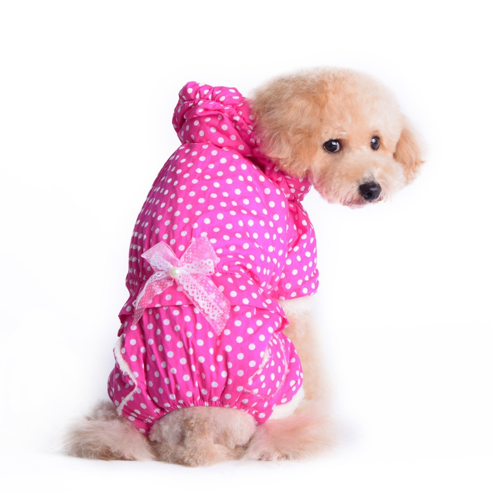 Warm Clothes For Dogs photo - 1