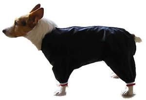 Waterproof Coats For Small Dogs photo - 3