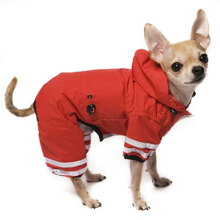 Waterproof Dog Coats With Hoods photo - 1