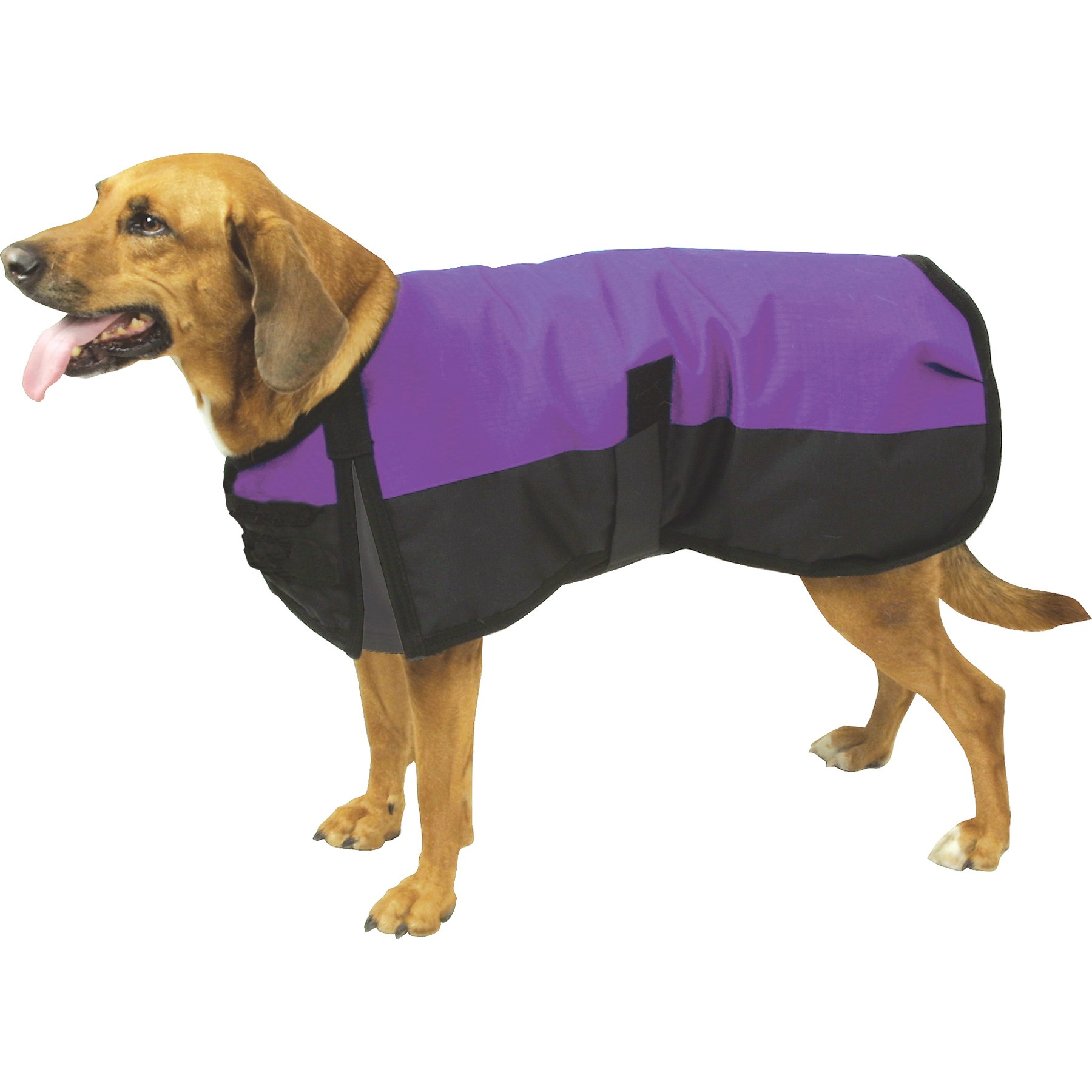 Waterproof Dog Jacket photo - 3