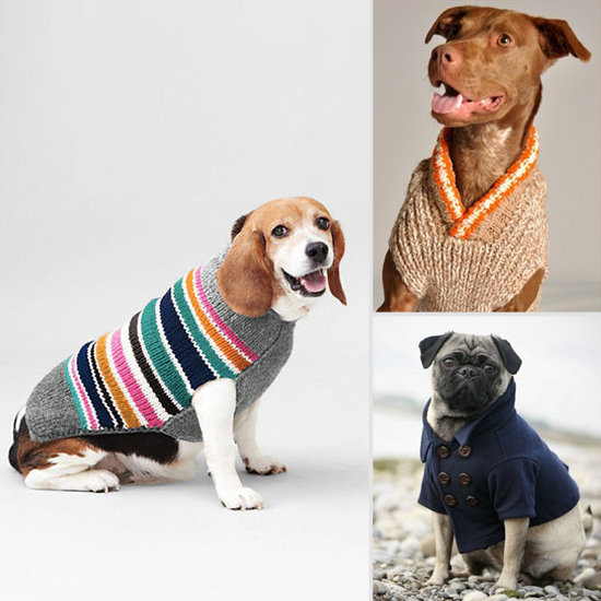 Winter Wear For Dogs photo - 1