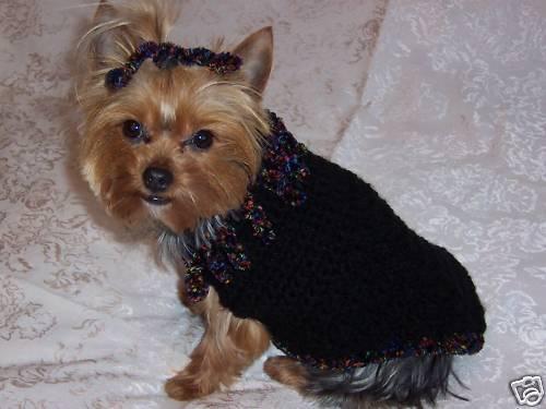 Yorkie Dog Sweaters photo - 1