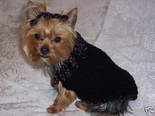 Yorkie Sweaters photo - 2